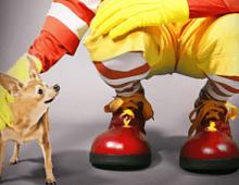 Taco Bell против McDonald's: война завтраков