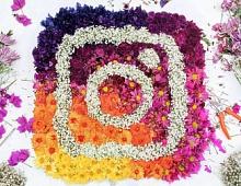 В «историях» Instagram появился стикер с тестами