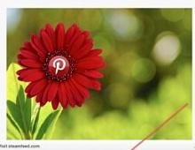 Pinterest: больше полезных пинов и вирусных возможностей