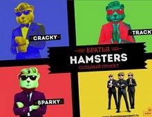 Братья Hamsters. Сольный проект