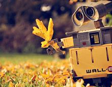 15 профессий, где роботы вытеснят людей уже через 8 лет