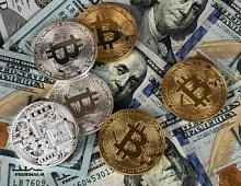В РФ появится организация по защите от мошенников на криптовалютном рынке
