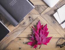 Искусство управлять: 12 книг для начинающих и опытных менеджеров