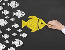 Influence-маркетинг: 5 способов бюджетно влиять на аудиторию