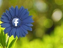 Исследование: что делают пользователи вFacebook